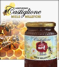 Miele dell'Elba
